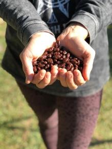 Xmas Generosity Organics Love and Co
