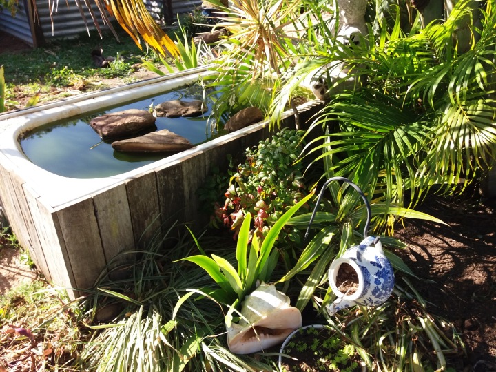 Old bath tub converted into a water feature.
