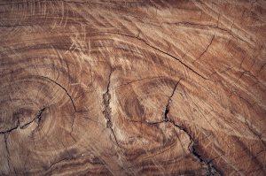 brown-close-up-hd-wallpaper-172289